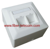 2-port Germany type Bevelled FTP Face Plate